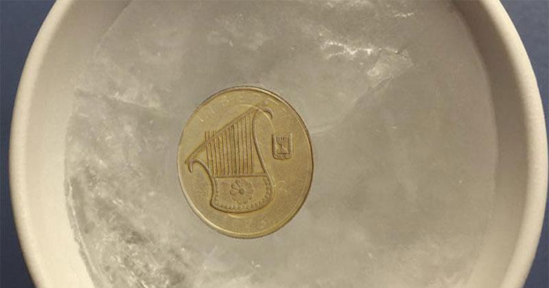 שימו מטבע על כוס קרח במקפיא בכל פעם שאתם נוסעים לחופשה, זו הסיבה