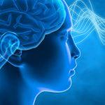 7 מזונות הפוגעים ביכולת הריכוז שלכם