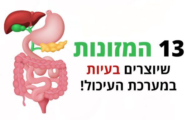 מערכת העיכול ו-13 המזונות שיוצרים לה בעיות