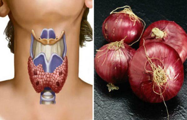 הרופאים מאשרים: בצל אדום משפר פלאים את בלוטת התריס