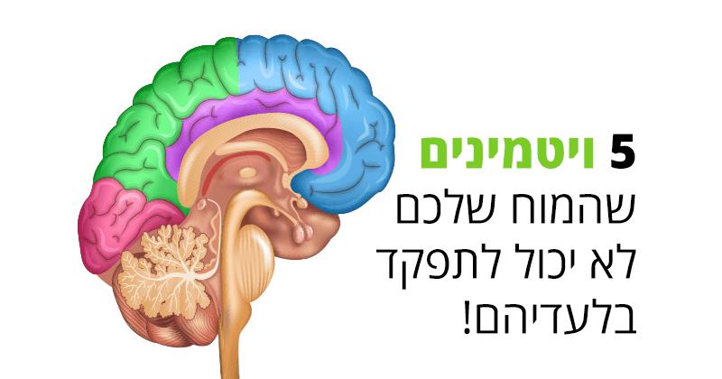 אלה הם 5 ויטמינים שהמוח שלכם לא יכול לחיות בלעדיהם