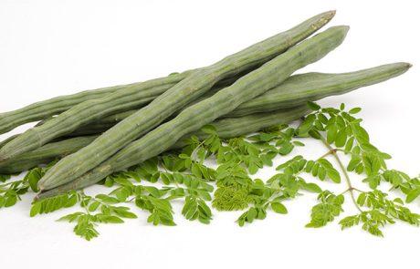 אתם יכולים לטפל ב-5 סוגי סרטן שונים, באמצעות אכילת 6 גרם מהצמח העוצמתי הזה!