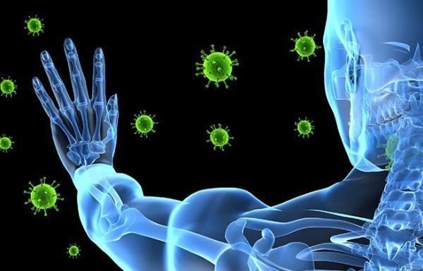 צום של 72 שעות מחדש את מערכת החיסון