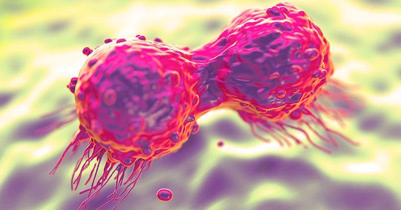 אנו שותים את זה כל יום, אך לא יודעים שזה גורם לסרטן השד