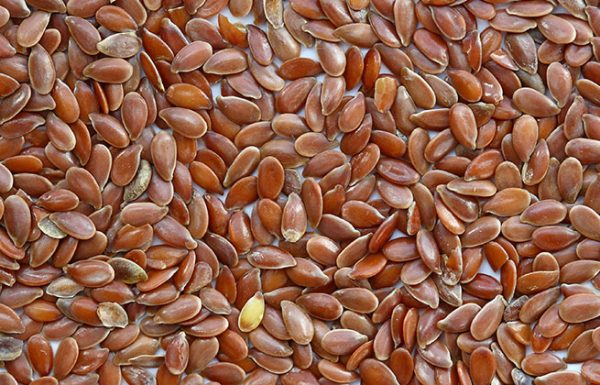על פי מחקרים – זרעי פשתן יכולים למנוע ולהרוג את תאי סרטן השד