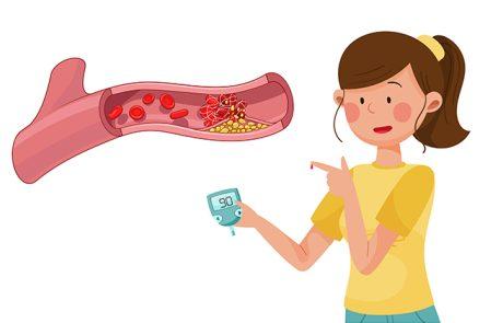 סיבים תזונתיים, כל מה שחשוב וצריך לדעת