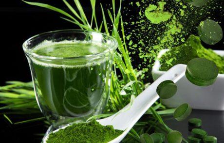 ספירולינה – 10 עובדות שהופכות אותה למאכל על