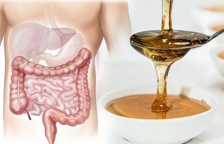 10 יתרונות בריאותיים של דבש, שמעולם לא ידעתם!