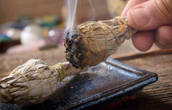12 צמחים לטיהור האנרגיות השליליות בבית