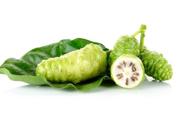 התמצית של הצמח הזה הורגת תאים סרטניים הנמצאים בריאות
