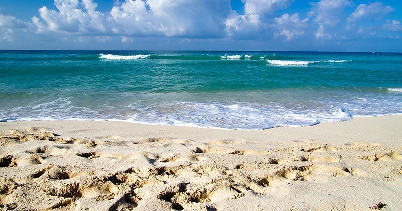 מדעני מוח ממליצים לכם בחום ללכת לים בקביעות