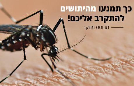 כך תמנעו מהיתושים להתקרב אליכם בדרך טבעית