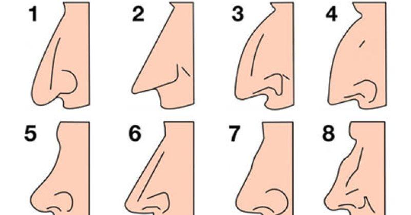 הצורה של האף שלכם אומרת המון על האישיות שלכם!