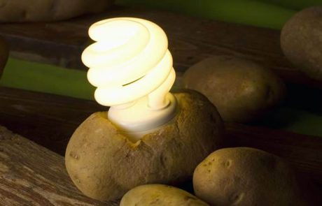 פרופסור למדעי הטבע גילה שאפשר להדליק נורה בעזרת תפוח אדמה