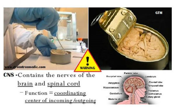 אזהרה! המרכיב הזה עלול לפגוע במערכת העצבים המרכזית שלכם